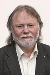 Vladimír Karlík